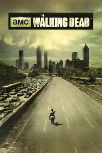 the-walking-dead-season-1-tv-poster