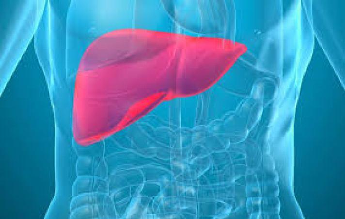 como cuidar el hígado