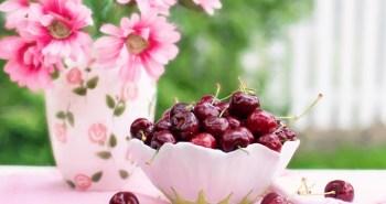 consejos para cuidar un cerezo