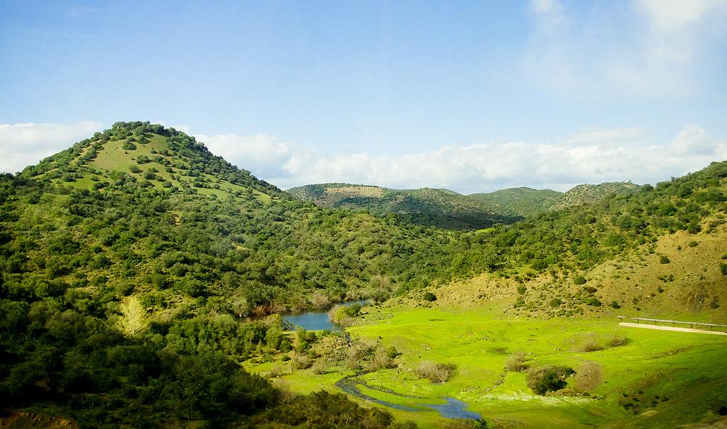 paisaje-en-sierra-morena-autor-sba73