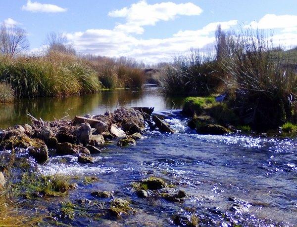 ruta-senderismo-naturaleza-villahermosa-lagunas-ruidera-campo-de-montiel-la5