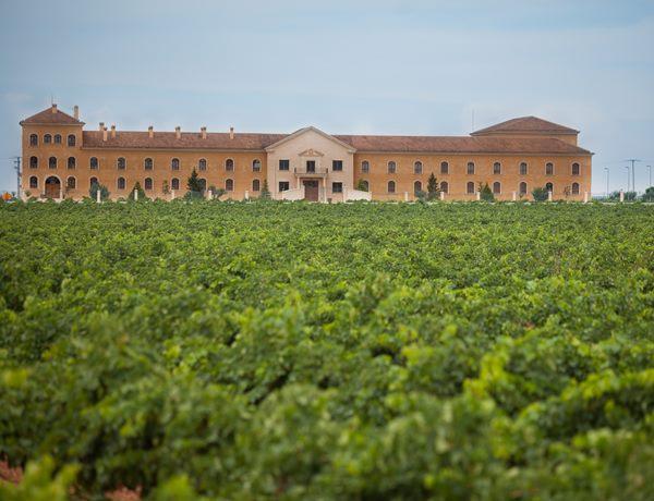 viñedos-bodegas-Lahoz