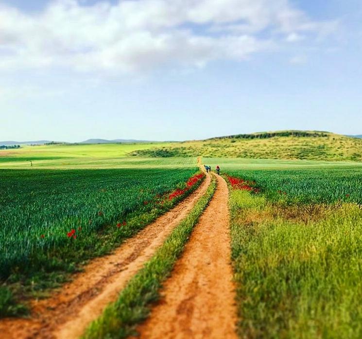 Ruta del Quijote turismo en La Mancha sabersabor.es
