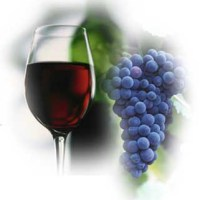 Enologia - Elaboracion de Vinos Tintos