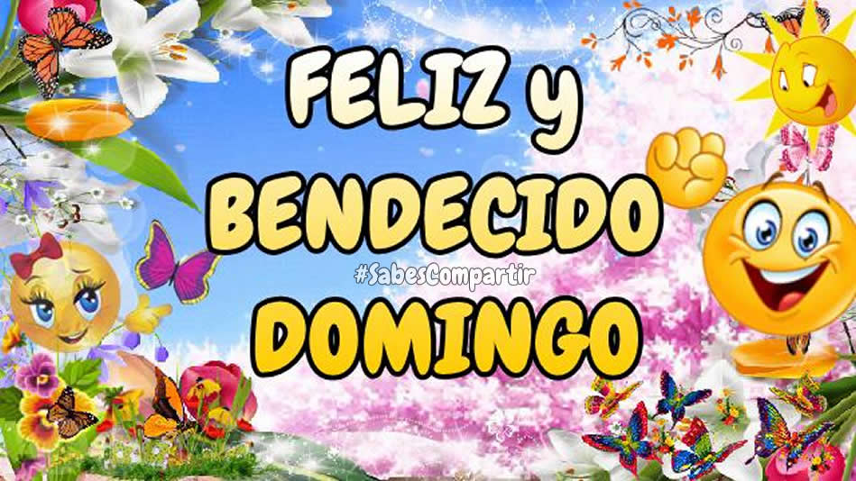 Video Mensaje y Frases Feliz bendecido domingo