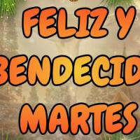 Video mensaje Feliz y Bendecido Martes Navideño