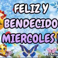 Videos e Imagenes con Frases y Mensajes de Buenos Días Feliz Miércoles