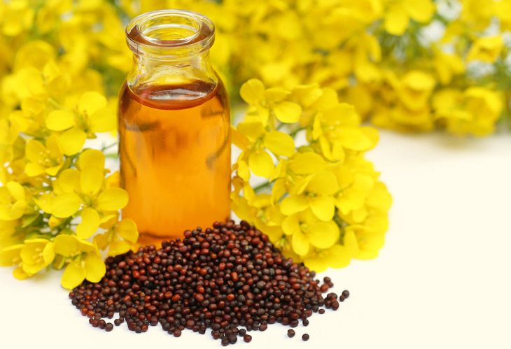 Amazing Benefits Of Mustard Oil For Hair, Skin And Health