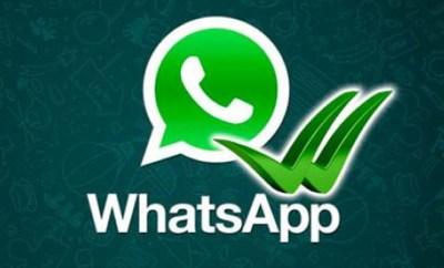 whatsapp-leido