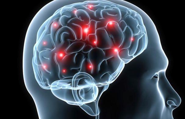 Así la sal afecta a nuestro cerebro según la ciencia
