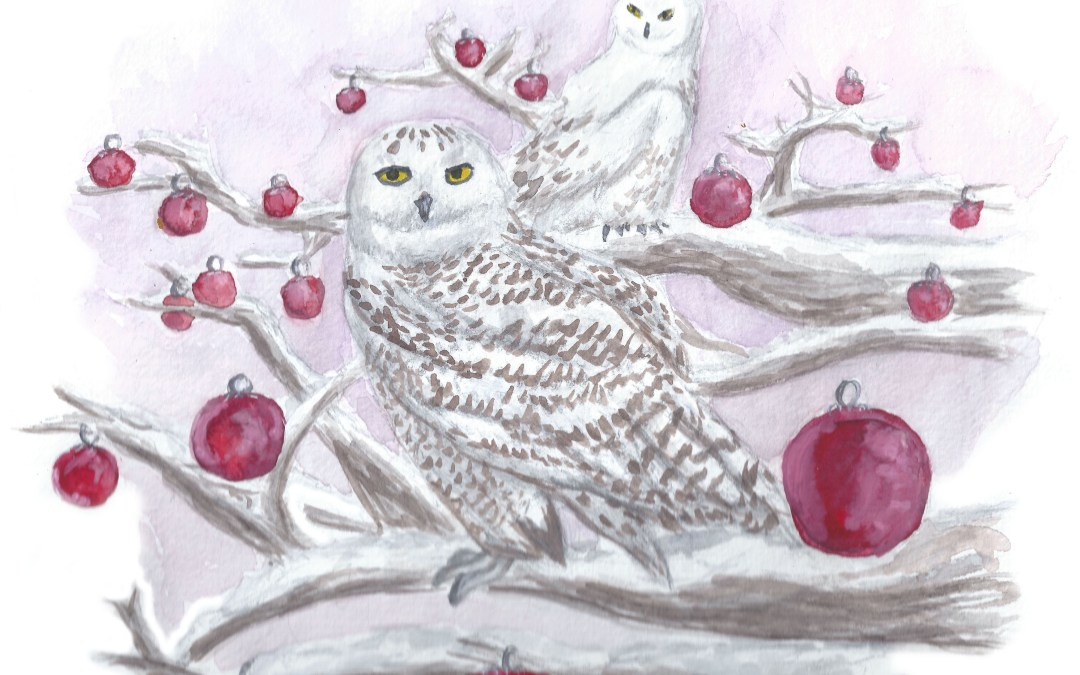 Whooo says it's too late to make Christmas stationery?