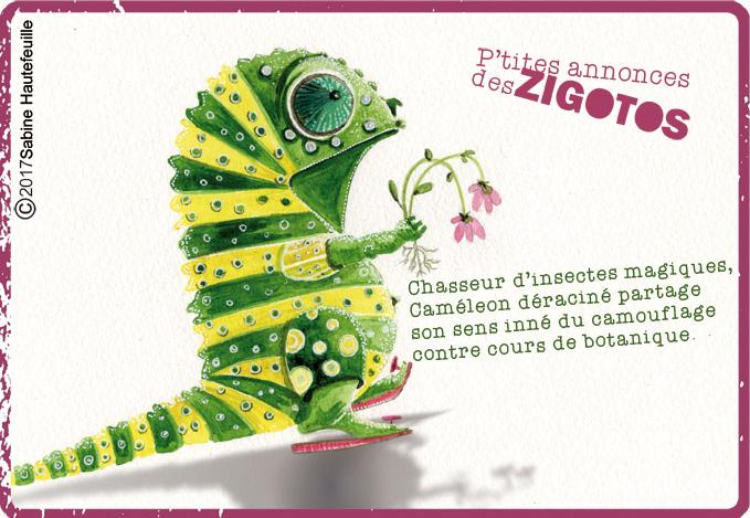 petites annonces des zigotos,cameleon