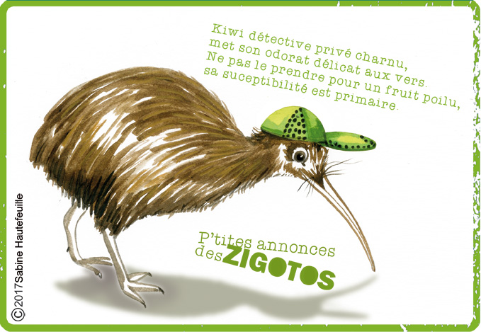 kiwi-p'tites annonces des zigotos