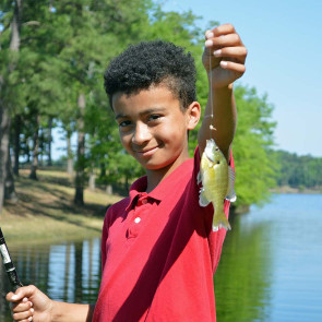 Toledo Fishing191855_194901117992347_4Toledo Fishing4744016500359168_n