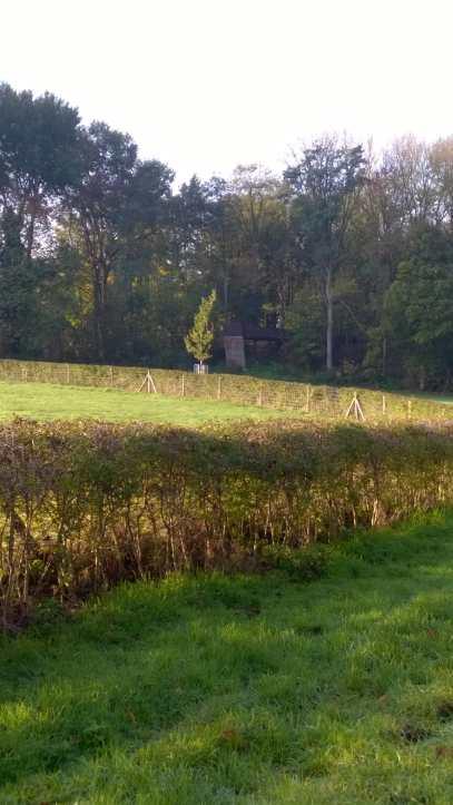 SabinePauwaert-CWRM-bestemming3