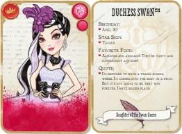 Card_-_DSDotSQ
