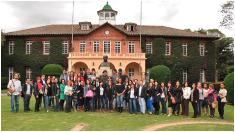 diamaestro2012