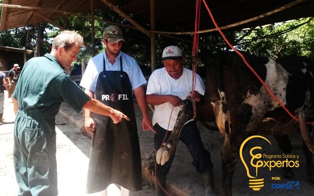 PROLECHE Mejora la Calidad de Productos Lácteos en El Salvador
