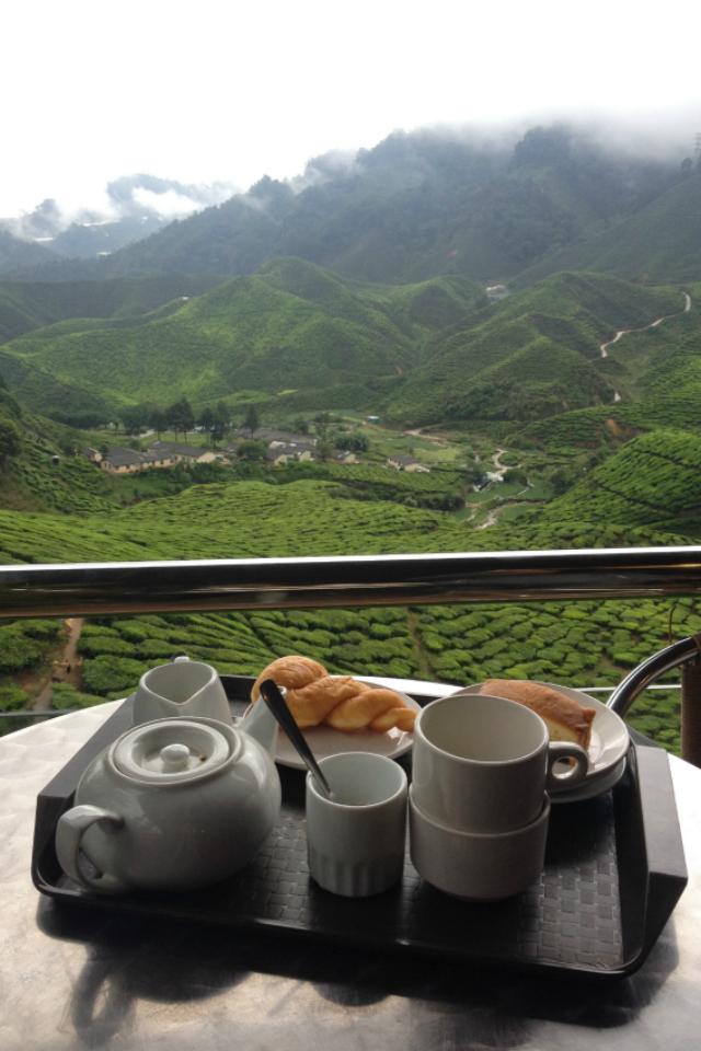 cameron-highlands-malasia
