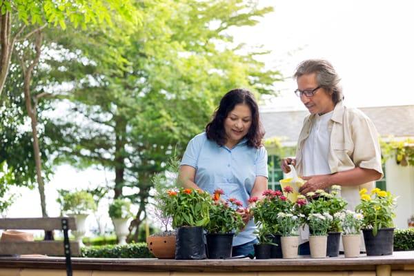 tips prra cuidar tus flores