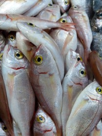 Fethiye fish feast (before)
