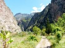 Butterfly Gorge