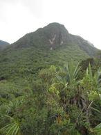Fertile slopes