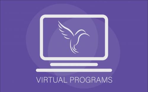 SNT Virtual Programs-01