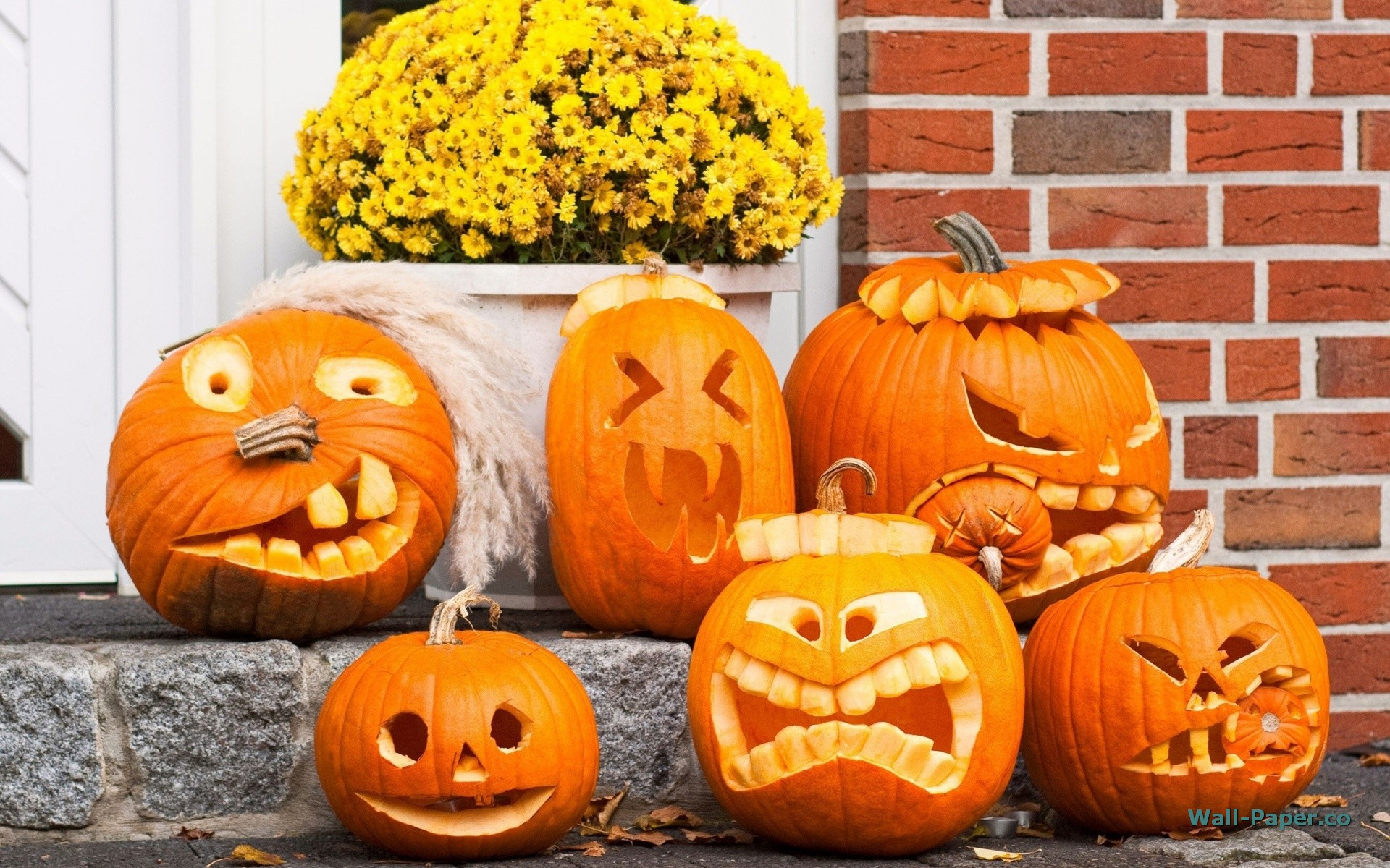 7 Things Maybe You Don T Know About Halloween