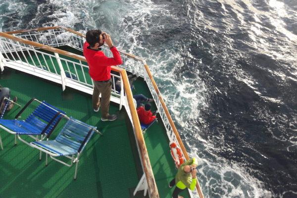Dass ich einmal zu warm haben könnte auf einer Hurtigruten-Reise konnte ich mir auf den winterlichen Reisen nie vorstellen. Doch heute war es soweit und wir genossen draussen einen Hochsommertag auf der MS Richard With (in Trondheim hatten wir am Morgen das Schiff gewechselt und fahren wieder nordwärts Richtung Tromsø). Ein, zwei Schweinswale begleiteten uns dabei :)