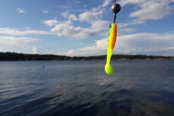 Mal wieder am Fischen - und mal wieder ohne richtigem Fisch an der Angel. Aber der Köder macht sich auch ganz gut vor dem blauen Himmel;).