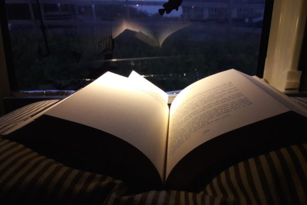 Von wunderbarer Herbstsonne war heute nichts mehr zu sehen, sondern viel Regen. Auch sonst war der Tag eher 'gnietig': wegen einer Wespe machte ich mich mit einem rutschigen Abhang bekannt, wir zahlten völlig überteuerte Preise in Trondheim und ein Fuchs erschreckte uns dermassen, dass ein Crocs (zum Zweck des Vertreibens) zeitweise im Maul des Fuchses davon getragen wurde. So genoss ich um 19.00 Uhr entspannt drinnen im Bus zu lesen und dem Regen zuzuhören.