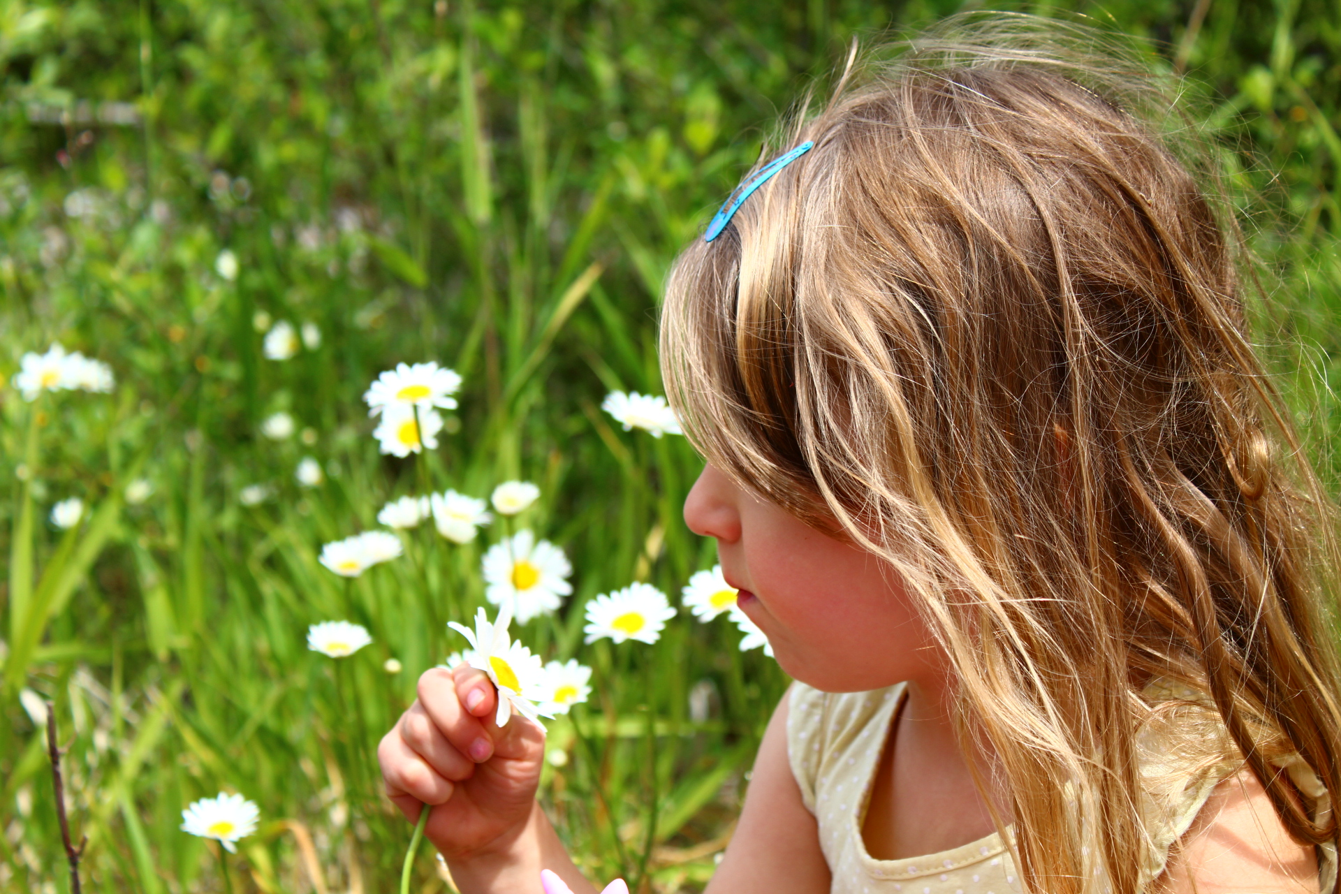My daughter and my daisies
