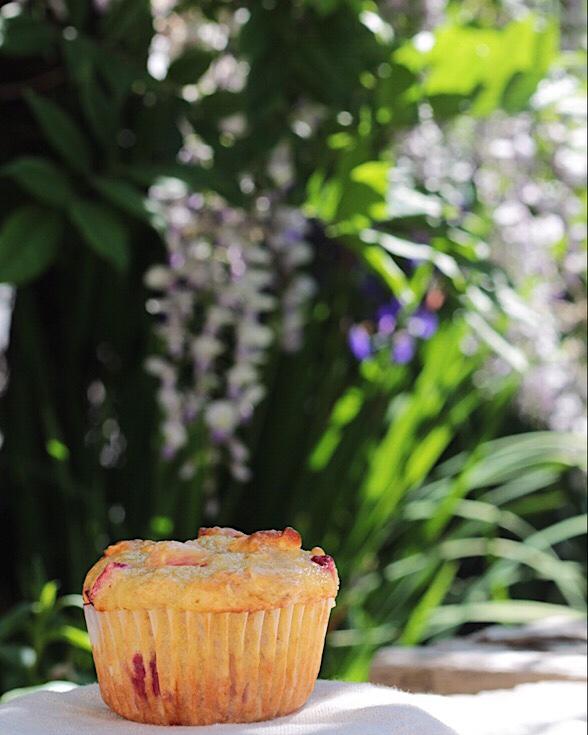 A muffin in the kitchen garden
