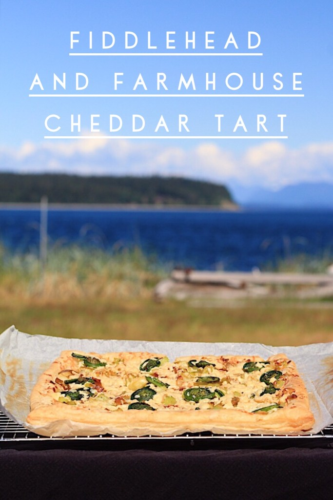 PNW Fiddleheads in Tart with Cheddar