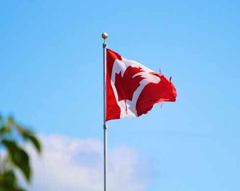 My Neighbor's Flag-happy Canada Day