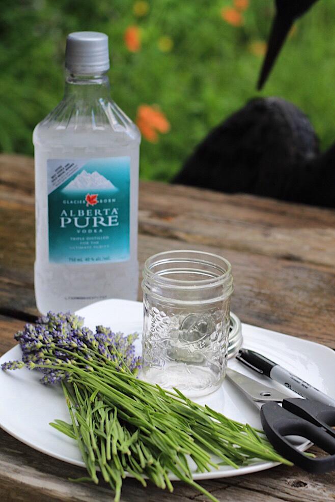 Lavender Extract Recipe