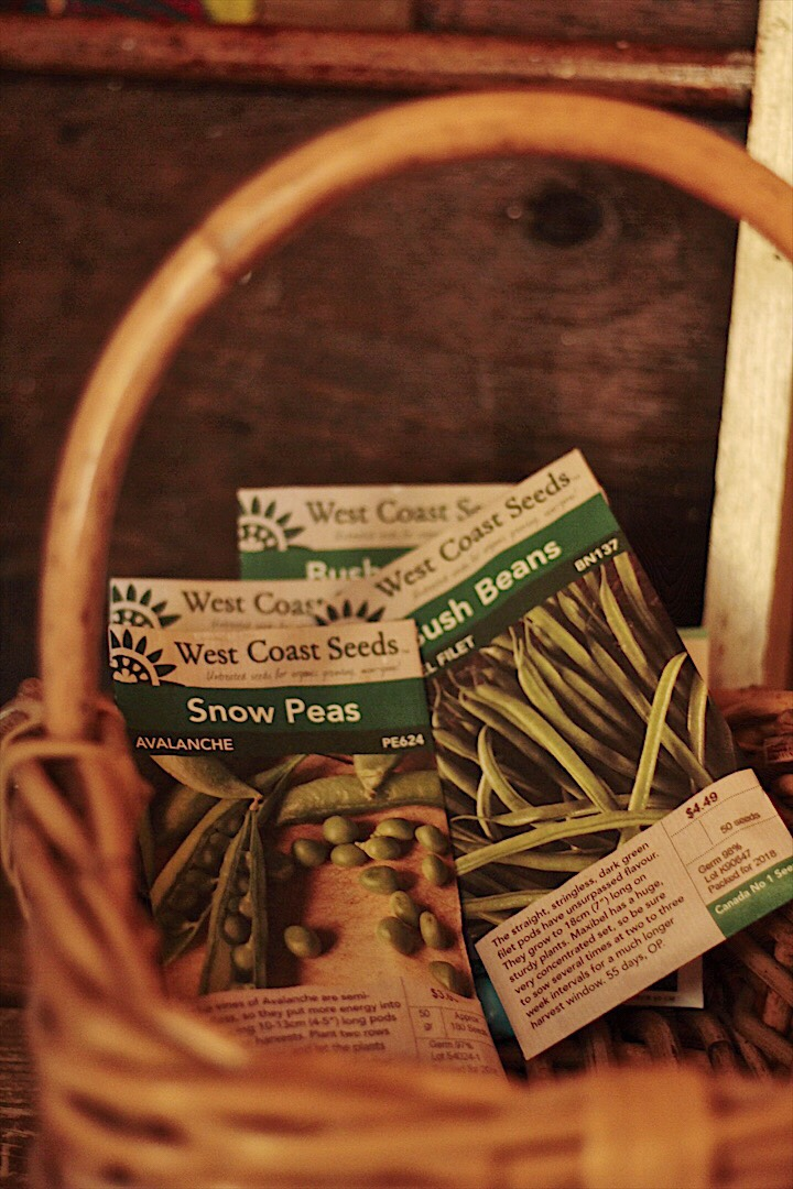 Westcoast Seeds in a basket by the front door
