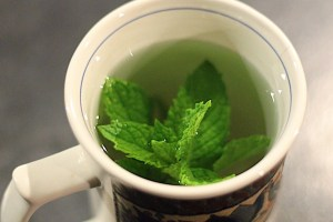 Fresh Peppermint Tea Brewing