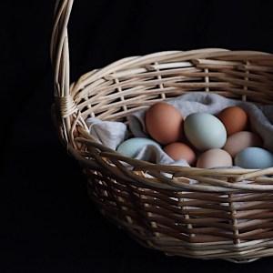 Basket Of Fresh Eggs