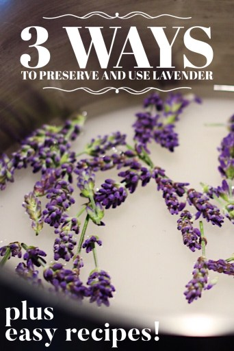 How To Preserve And Use Lavender In Cooking