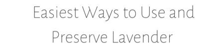 Easy Lavender Link
