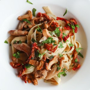 Fresh Fettuccine with Chicken and Sun Dried Tomatoes