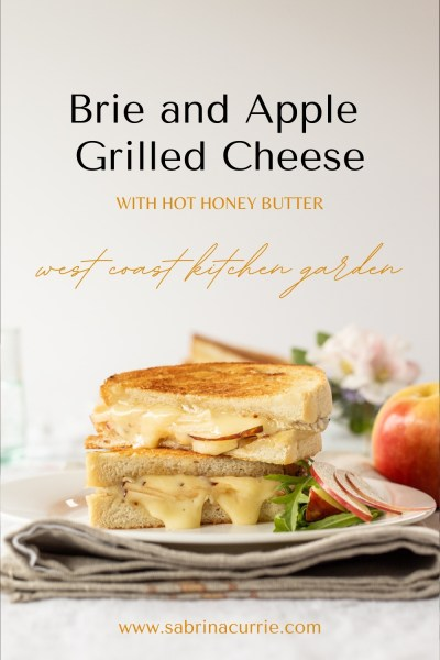 Melty Apple Brie Grilled Cheese