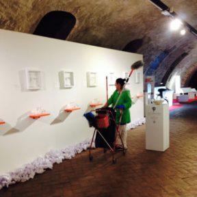 """Sabrina D'Alessandro, """"III Censimento Peculiare - una parola per dire il futuro sentire"""", Palazzo Estense, Ferrara 2015"""