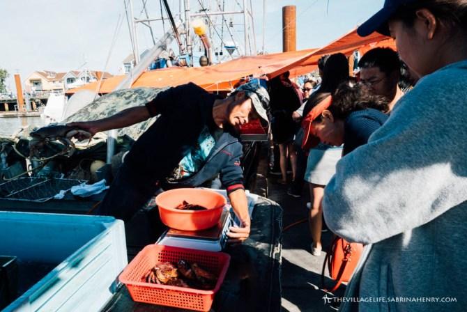 fisherman's wharf steveston richmond bc 2017