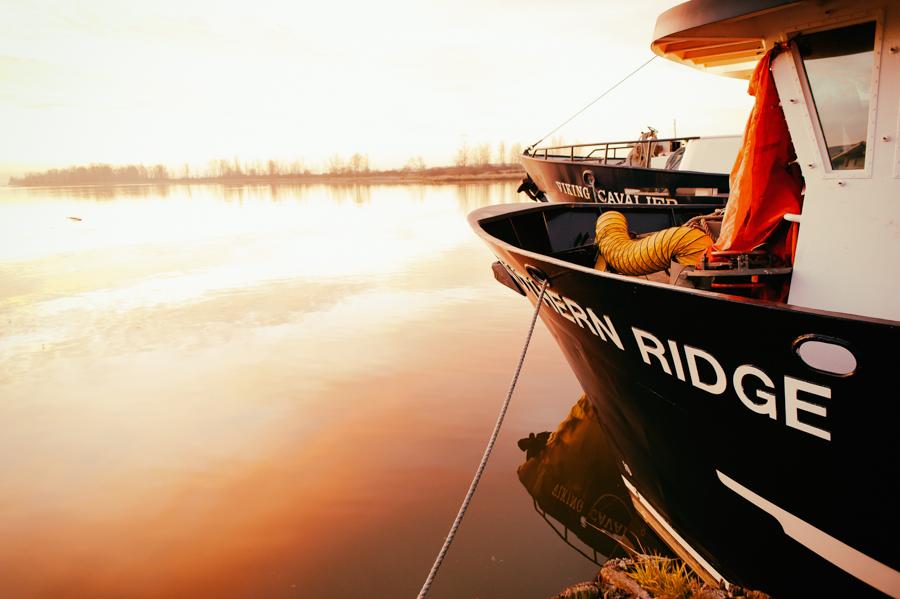 steveston harbour richmond