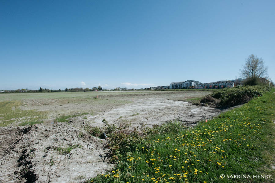 Empty land on No. 2 Road in Steveston