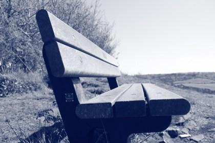 bench in monochrome