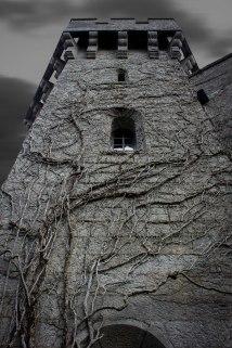 castle-in-monochrome-2